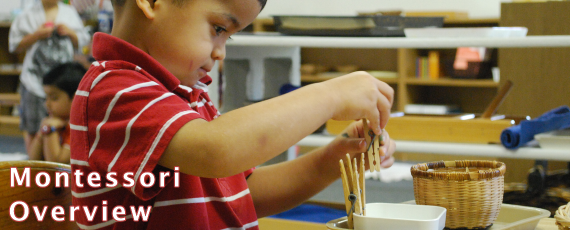 Montessori Overview