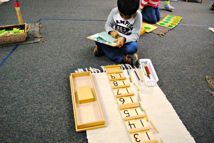 montessori_mathematical_mind