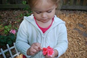 Independent Toddler: Dressing