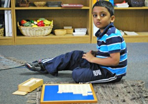 Montessori and Scientific Research